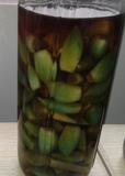 翡翠蒜(绿蒜)